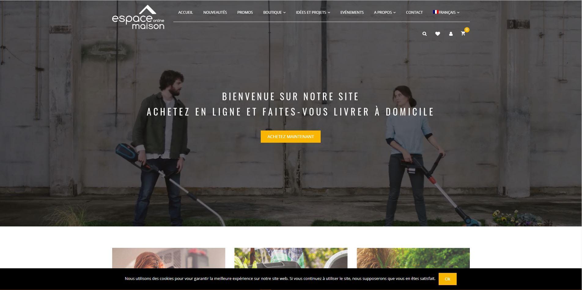 espace-maison-digital-marketing-mauritius-e-commerce